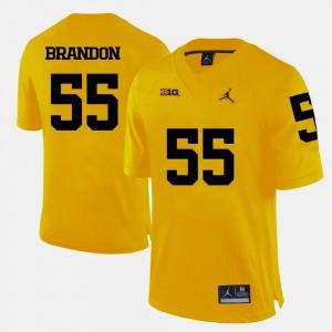 Brandon Graham Michigan Jersey #55 For Men's College Football Yellow